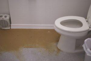 Sewage in Restroom2
