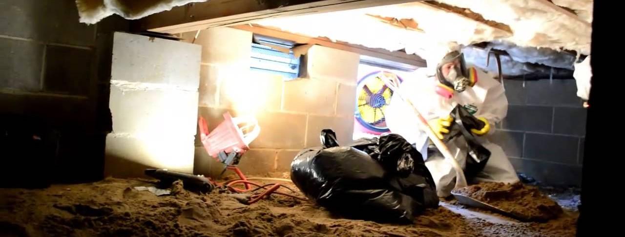 crawl space sewage leak cleveland ohio